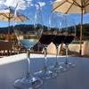 サンフランシスコのお土産にコストコでワインを!