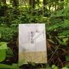【告知】7月15日開催『新訳 ティク・ナット・ハンの般若心経』発刊記念。読書会的ワークショップ「今を生きる、わたしたちのための般若心経」