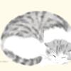 """神楽坂の""""猫が居る喫茶店""""mugimaru2に再訪してきました"""