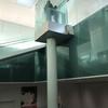 テレスコフレーム方式エレベーターを見に行った
