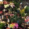 早春の入荷のお花たち♪