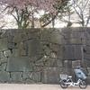 【ビッケポーラー②】bikke・ハイディー・ヤマハの子供乗せ自転車選びで悩んだこと