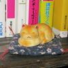 7月30日 ホームタウンドルパ大阪9 のガイドブック買ってきた!