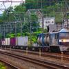 5月24日撮影 東海道線 大磯~二宮間 貨物列車