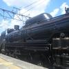 春の「SL/ELぐんま よこかわ」と、「リゾートやまどり」日帰り鉄道旅