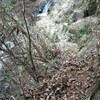 五助谷途中で断念し、十文字山へ(その1)五助滝で撤退