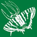 自然写真家・栗田貞多男の撮影日記