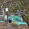 カメトープの新しい水源を求めて その5 ビルジポンプとディープサイクルバッテリー