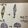傘では飛べない