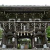 京都 青モミジの善峯寺