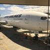 【朗報と悲報】JAL「羽田ーホノルル」線が2020年3月29日復活!!しかし「成田発着便」利用者にはしわ寄せが・・・