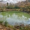 滝ノ入上池(仮称)(愛知県新城)