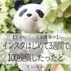 【祝☆インスタグラム100投稿】instagramはじめて3週間で怒涛の100投稿を達成しました