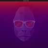 Ubuntu 20.10 日本語版をインストールしてみた。
