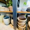 ふるさと納税の観葉植物用プランター選び