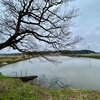 香取大戸かっぱ緑地の池(千葉県香取)