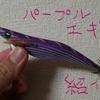 エギのカラー パープル(紫)編