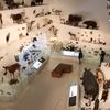 南半球最大級の博物館!メルボルン博物館(Melbourne Museum)