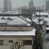東京、初雪
