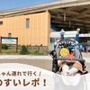【新江ノ島水族館】赤ちゃん連れえのすいレポ!授乳室などの設備情報やお得な年パス情報など♪