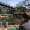 服部緑地・植物園名物「シェフの屋台&早春のハーモニー」に行ってきたよ
