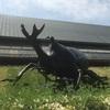 スマホが手放せない僕はデジタルデトックスがしたくて群馬県立自然史博物館に足を運んだ。