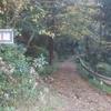 林道探索 龍山 橿山 明善神社周辺