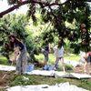 桃狩り食べ放題!山梨県御坂町で外国人観光客に人気、オススメの農園。peach picking.All-you-can-eat.Fruit Farm.