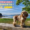 2020年5月7日香川県 自粛緩和!