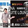 福岡空港 2019年2月【ANAスイートラウンジ vs ANAラウンジ徹底比較】新たに誕生した ANA SUITE LOUNGE と リニューアルした ANA LOUNGE の利便性や寛ぎ空間は?