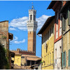 【イタリア一人旅】シエナ(Siena)で街歩き