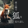 東上線で狐を見た話し