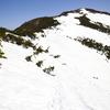 尾瀬 残雪の至仏山