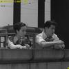 本日のcinema/「洲崎パラダイス 赤信号」YouTubeで期間限定無料配信中