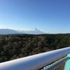 三島のスカイウォーク♫富士山もバッチリ見えました