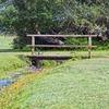 射手座28度サビアンシンボル: An old bridge over a beautiful stream(情報整理と取捨選択)