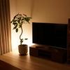スタンドライトの間接照明でおしゃれな部屋に。IKEAのFADOで2000円からお手軽に。