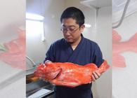 すごい深海魚が釣れたので、魚をさばけるようになった友人(小林銅蟲)に調理させてみた
