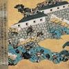 なぜ後醍醐天皇による倒幕計画は成功したのか??