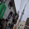 可愛い猫が店内を自由に徘徊する、絶品洋食店。錦糸町「エコー」
