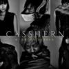 CASSHERN-キャシャーン-(映画)