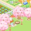 【すみっコ農園】しだれ桜をゲットしました