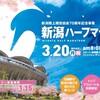新潟シティマラソン2017のこと(新潟ハーフマラソン2017エントリー)