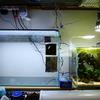 30cmキューブ水槽から60cm水槽へ【水槽と照明編】