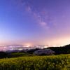 【天体撮影記 第154夜】 長崎県 白木峰高原 月夜に咲く桜と菜の花の世界