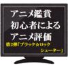 アニメ鑑賞初心者によるアニメ評価 第二弾「ブラックロックシューター」