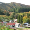 我が家周辺の秋の色🍂