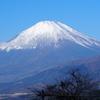 晩秋の西丹沢で富士山遠望 Part2