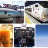 関空より宮崎へ!少し変わった宮崎空港で名物のマンゴー100%ジュースを飲む!【宮崎】#1