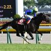 昨年の青葉賞優勝ヴァンキッシュランが引退、種牡馬に